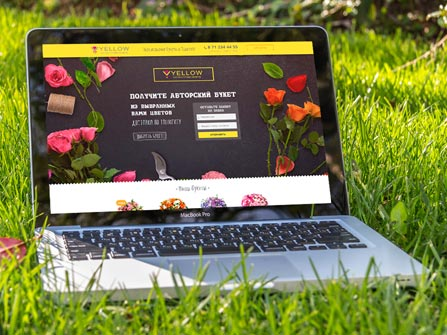 portfolio webnow