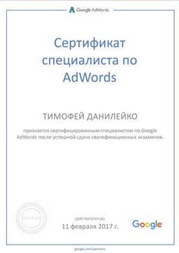 Сертификат Данилейко Тимофей