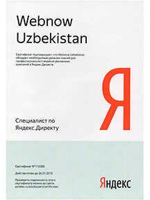 Yandex direct 2019